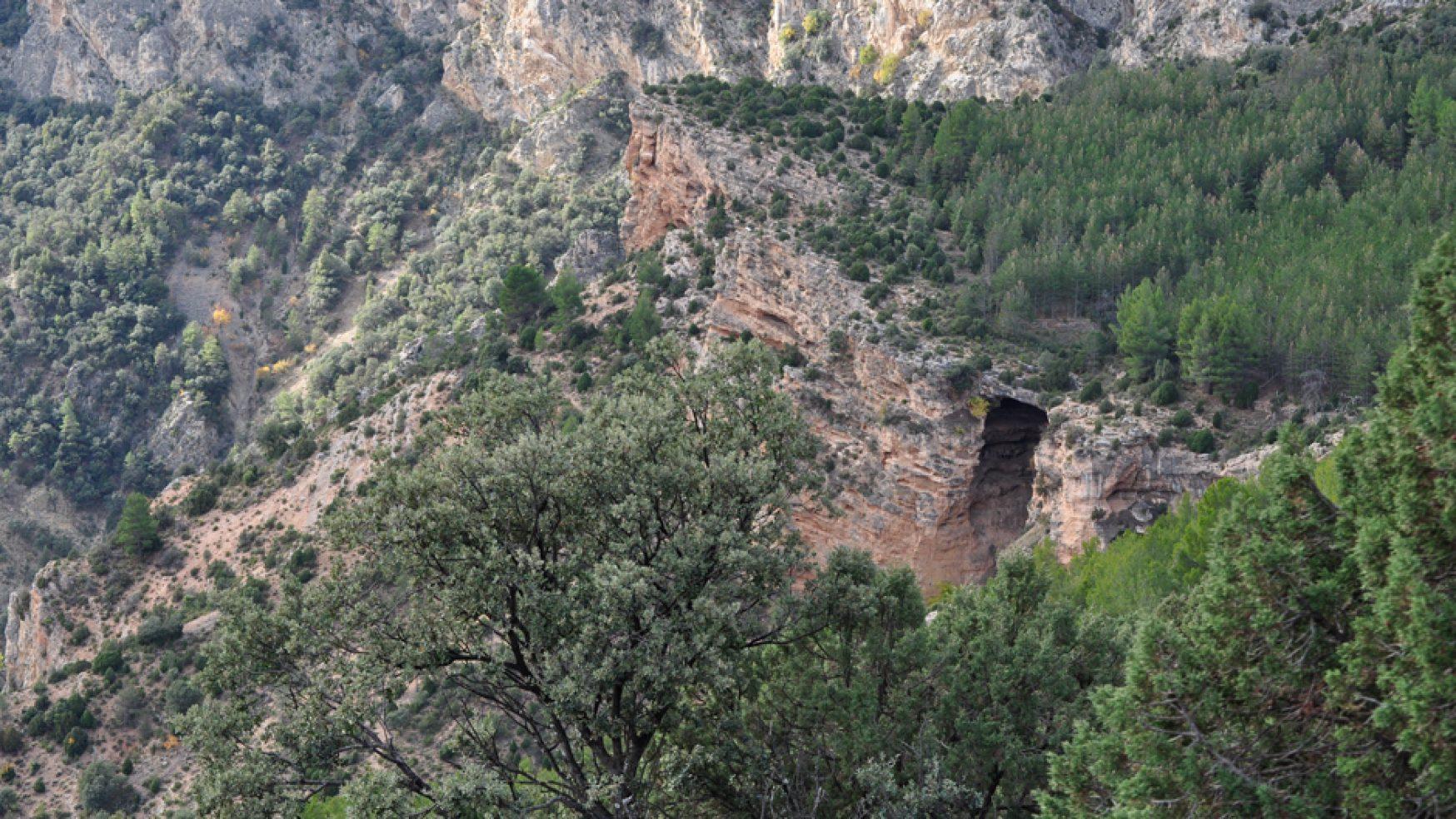 Visita Cueva El Ermitaño/Órganos de Montoro